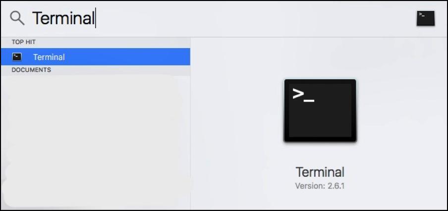 spotlight-terminal